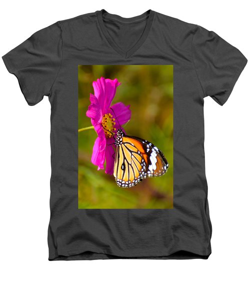 Butterfly II Men's V-Neck T-Shirt by Fotosas Photography
