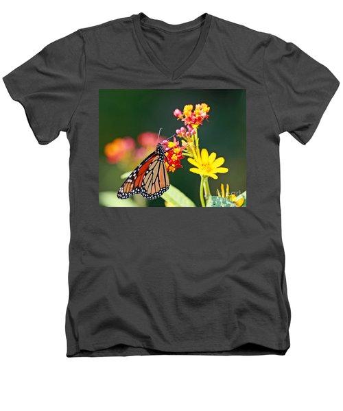 Butterfly Monarch On Lantana Flower Men's V-Neck T-Shirt