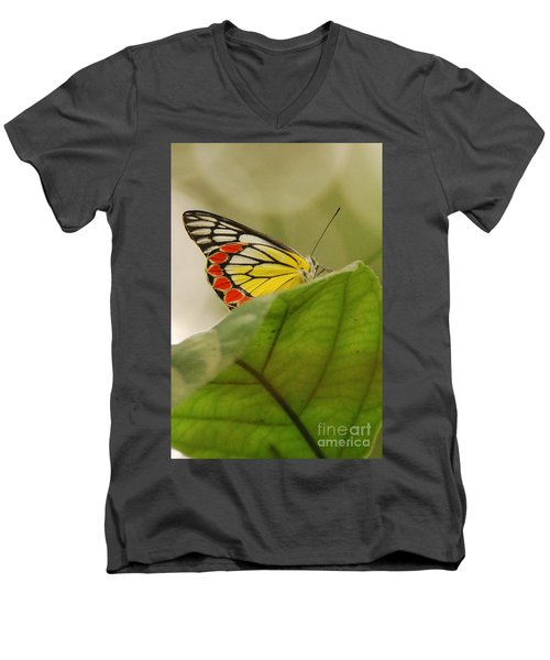 Men's V-Neck T-Shirt featuring the photograph Butterfly Resting by Fotosas Photography