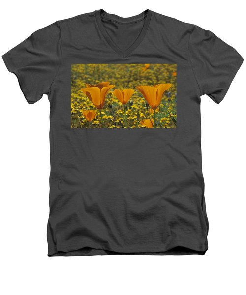 California Gold Men's V-Neck T-Shirt