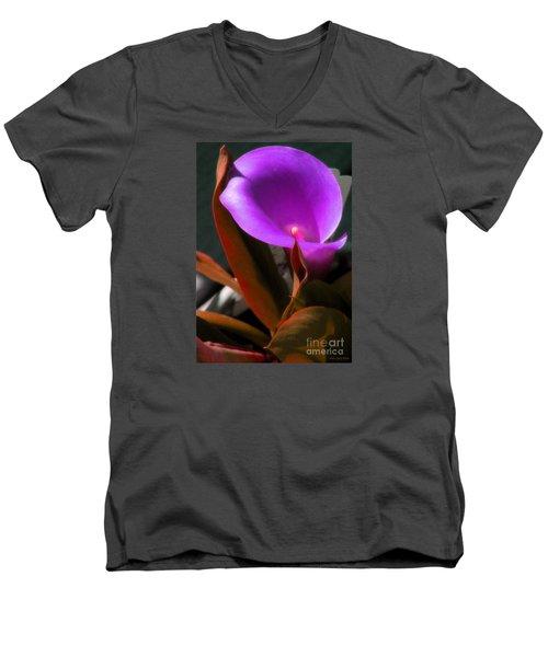 Calle Color Men's V-Neck T-Shirt