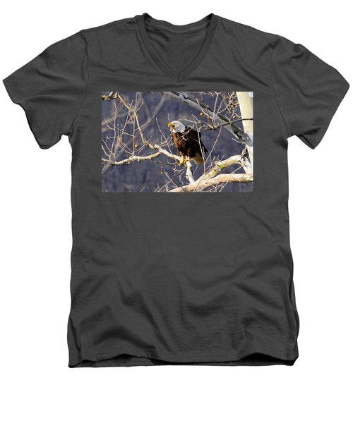 Men's V-Neck T-Shirt featuring the photograph Calling For His Mate by Randall Branham