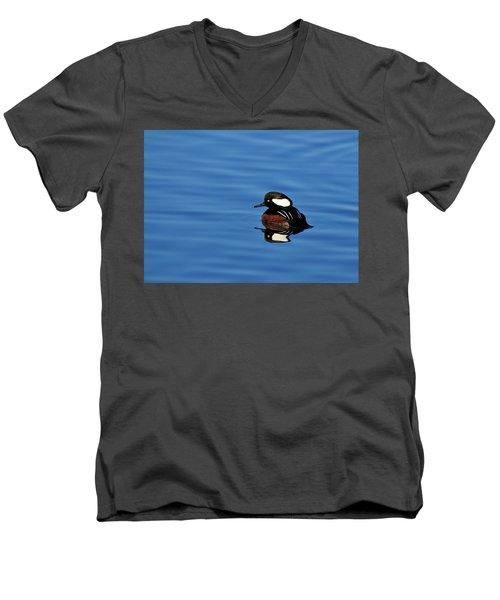 Calm Reflection Men's V-Neck T-Shirt