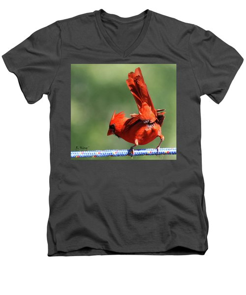 Cardinal-a Picture Is Worth A Thousand Words Men's V-Neck T-Shirt