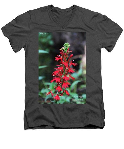 Cardinal Flower Men's V-Neck T-Shirt