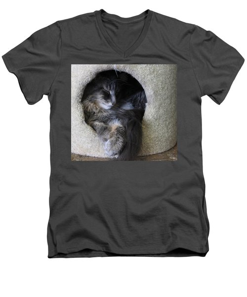 Cat In A Hole Men's V-Neck T-Shirt by Mary-Lee Sanders