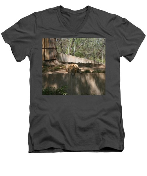 Men's V-Neck T-Shirt featuring the photograph Cat Nap by Stacy C Bottoms