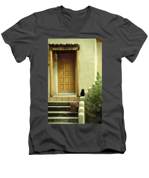Cat Post Men's V-Neck T-Shirt by Brent L Ander