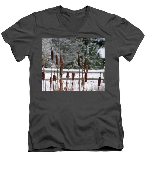 Cattails In Winter Men's V-Neck T-Shirt