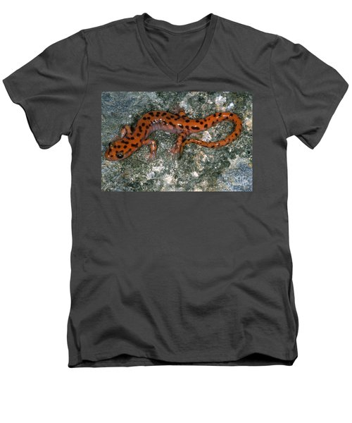 Cave Salamander Men's V-Neck T-Shirt by Dante Fenolio