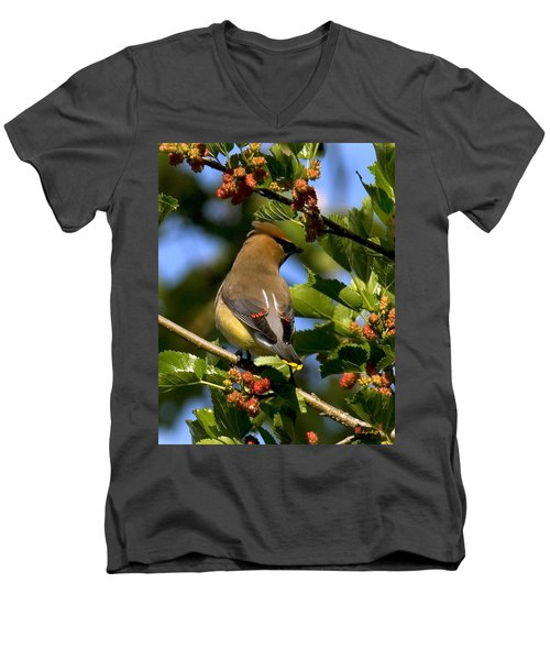 Men's V-Neck T-Shirt featuring the photograph Cedar Waxwing Dsb056 by Gerry Gantt