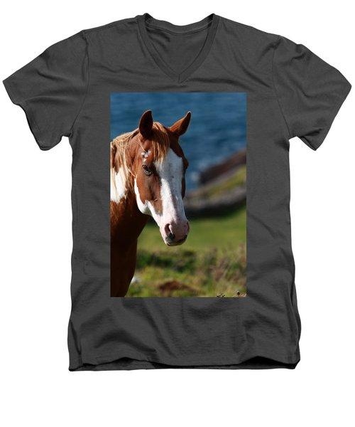 Chestnut Mare  Men's V-Neck T-Shirt
