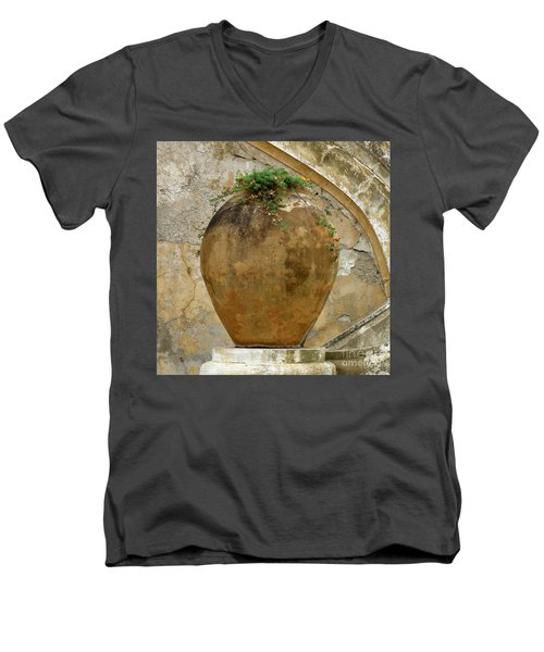 Clay Pot Men's V-Neck T-Shirt by Lainie Wrightson