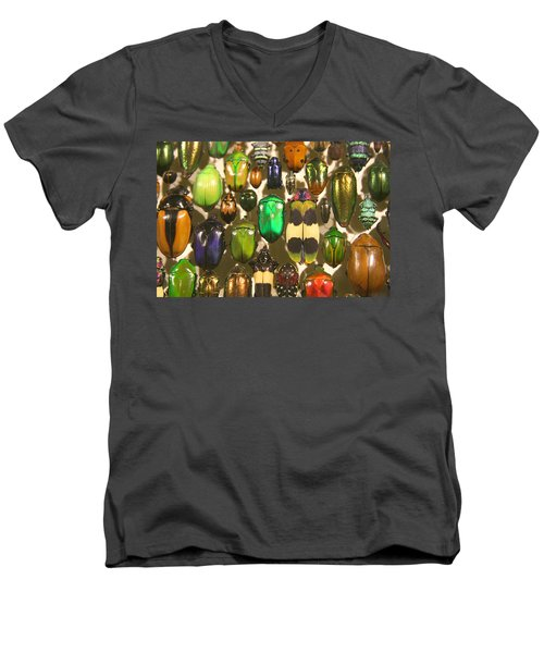 Colorful Insects Men's V-Neck T-Shirt by Brooke T Ryan