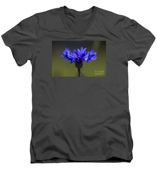 Cornflower Blue Men's V-Neck T-Shirt by Clare Bambers