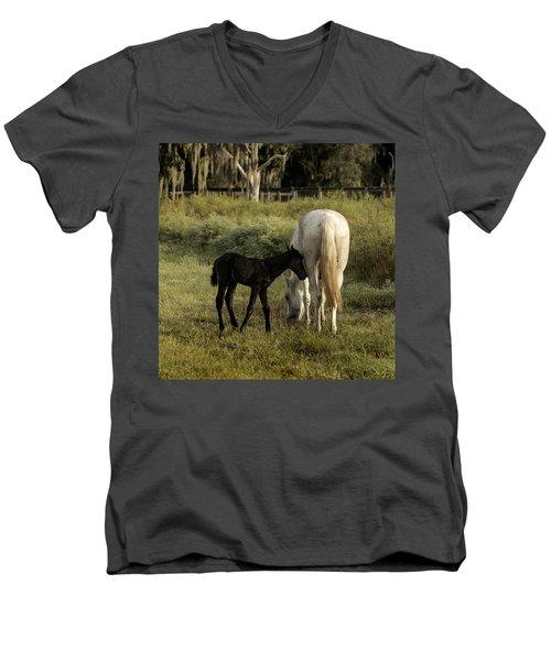 Cracker Foal And Mare Men's V-Neck T-Shirt