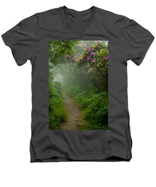 Craggy Path 2 Men's V-Neck T-Shirt