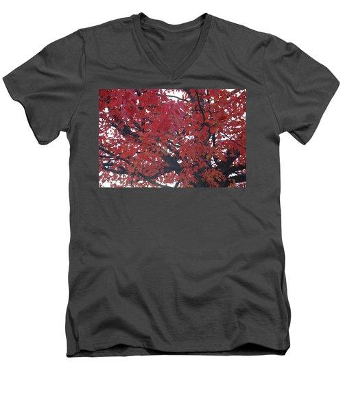 Crimson Leaves Men's V-Neck T-Shirt