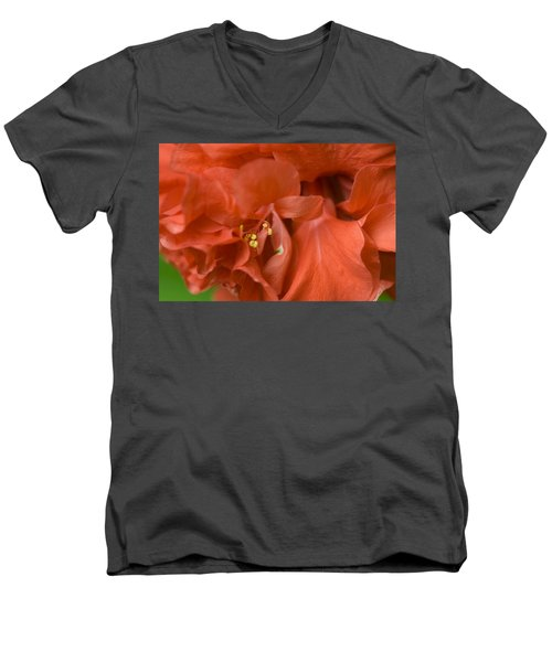 Curly Hibiscus Men's V-Neck T-Shirt by Rich Franco