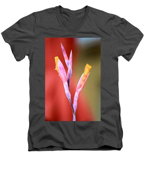 Cusp Of Emergence Men's V-Neck T-Shirt