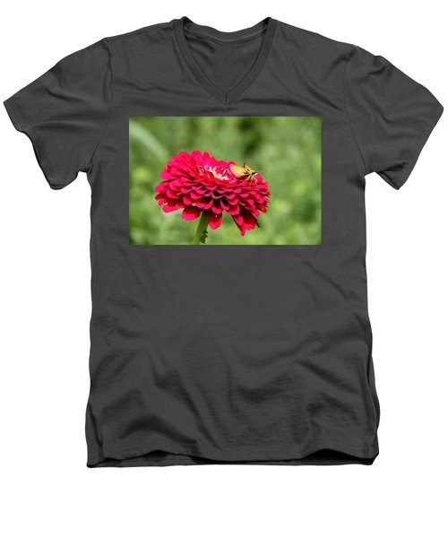 Men's V-Neck T-Shirt featuring the photograph Dahlia's Moth by Elizabeth Winter
