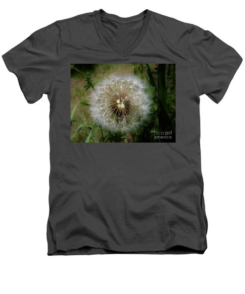 Men's V-Neck T-Shirt featuring the photograph Dandelion Going To Seed by Sherman Perry