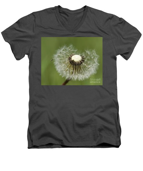 Dandelion Half Gone Men's V-Neck T-Shirt by Teresa Zieba