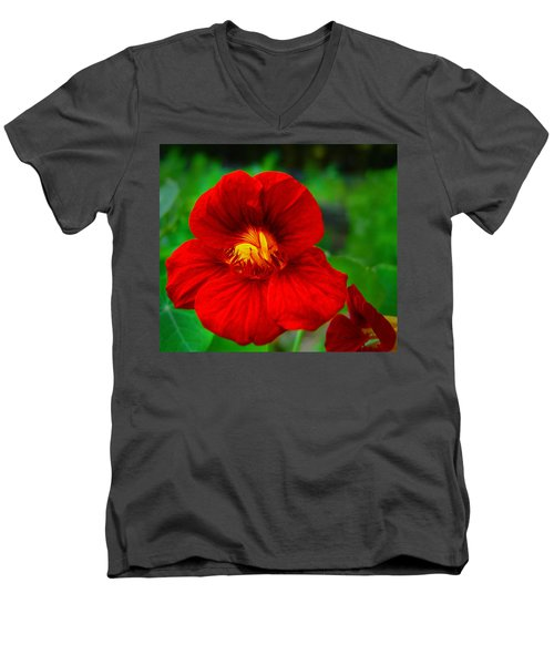 Men's V-Neck T-Shirt featuring the photograph Day Lily by Bill Barber