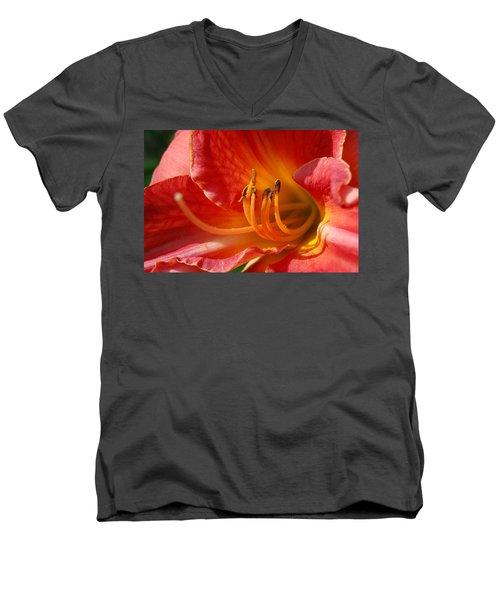 Daylilly Close Up Men's V-Neck T-Shirt by Randy J Heath