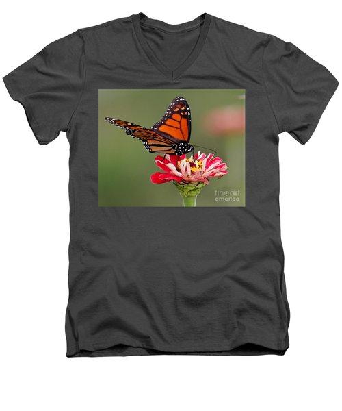 Delicate Men's V-Neck T-Shirt