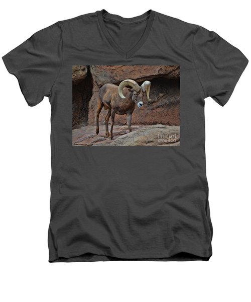 Desert Bighorn Sheep Ram I Men's V-Neck T-Shirt