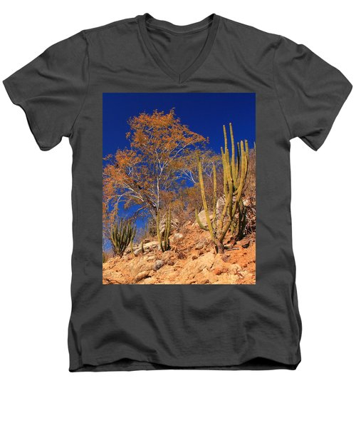Desert Colors Men's V-Neck T-Shirt by Roupen  Baker