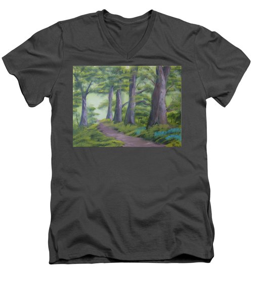 Duff House Path Men's V-Neck T-Shirt
