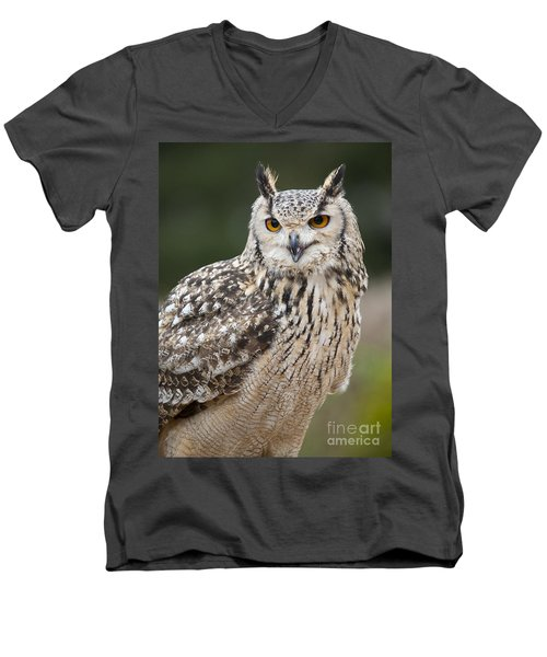Eagle Owl II Men's V-Neck T-Shirt
