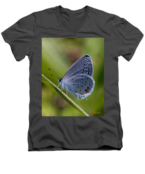 Eastern Tailed-blue Butterfly Din045 Men's V-Neck T-Shirt