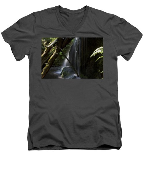 Eden On Orcas Men's V-Neck T-Shirt