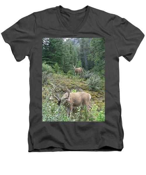 Elegant Elk Men's V-Neck T-Shirt