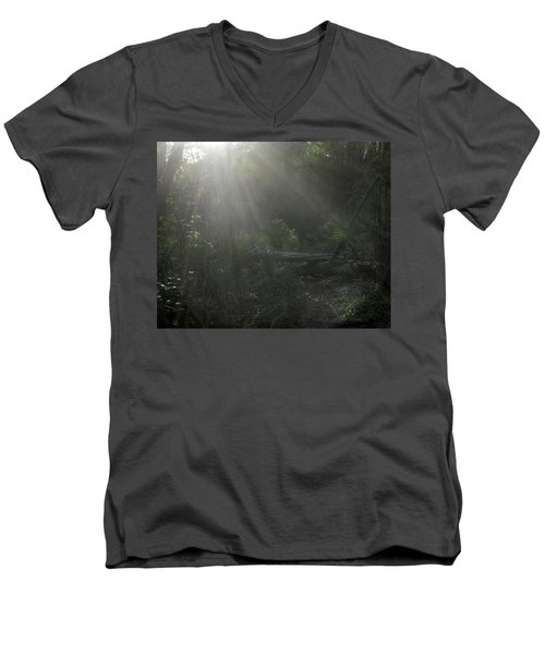 Enchanted Glen Men's V-Neck T-Shirt