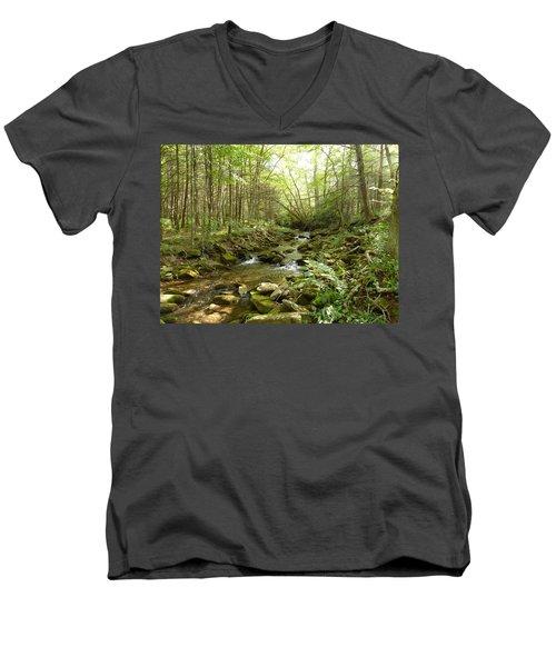 Enchanted Stream Men's V-Neck T-Shirt