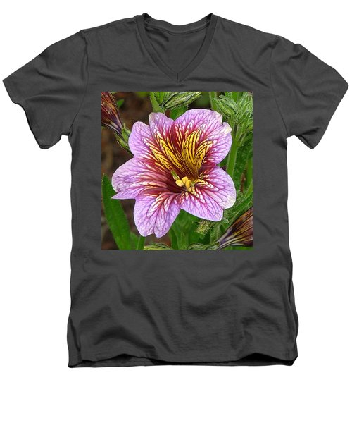 Exploding Beauty Men's V-Neck T-Shirt by Wendy McKennon