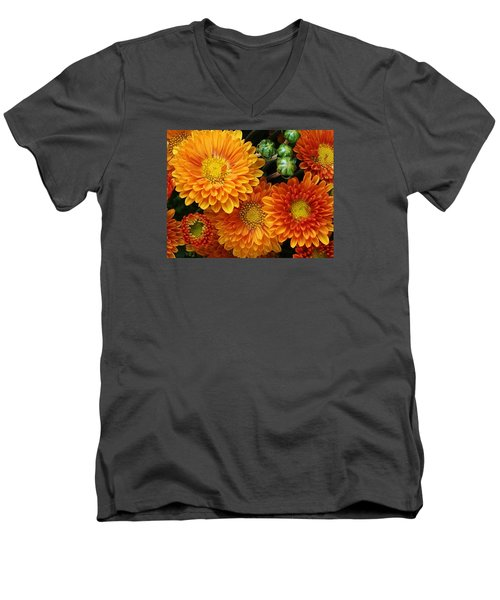 Men's V-Neck T-Shirt featuring the photograph Fall Colors by Bruce Bley
