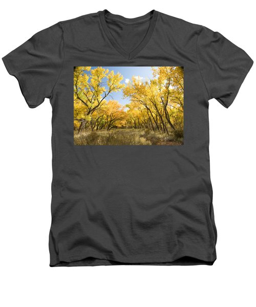 Fall Leaves In New Mexico Men's V-Neck T-Shirt