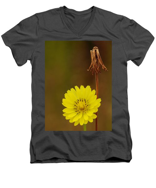 False Dandelion Flower With Wilted Fruit Men's V-Neck T-Shirt