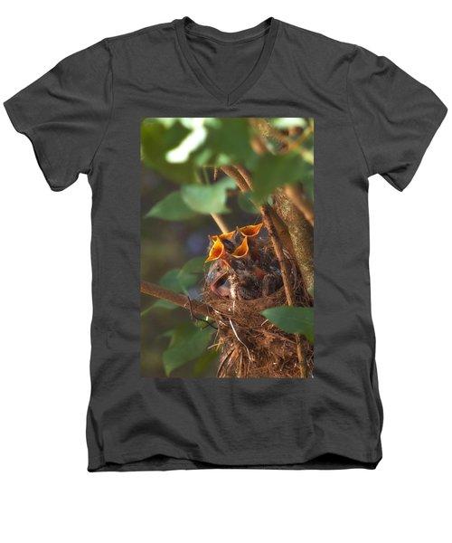 Feeding Time Men's V-Neck T-Shirt by Joann Vitali
