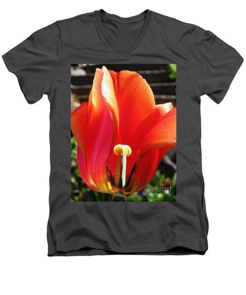Flame Men's V-Neck T-Shirt by Rory Sagner