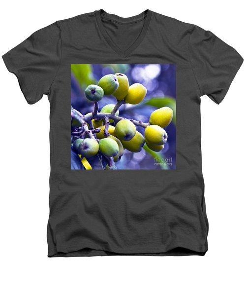 Sicilian Fruits Men's V-Neck T-Shirt