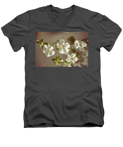 Giant Snowflakes Men's V-Neck T-Shirt
