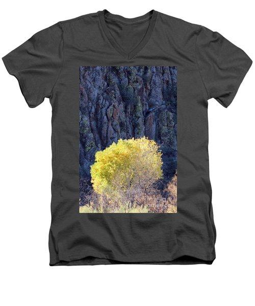 Gilded Autumn Men's V-Neck T-Shirt