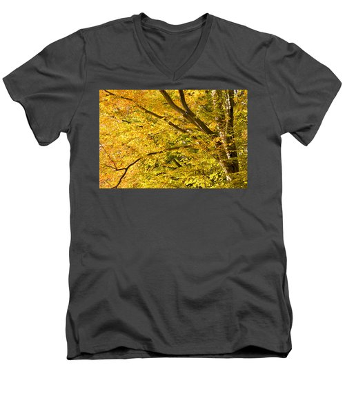 Golden Autumn Men's V-Neck T-Shirt