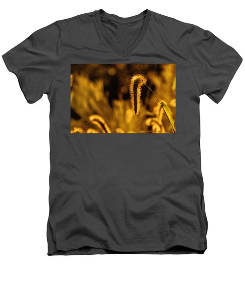 Grass In Golden Light Men's V-Neck T-Shirt
